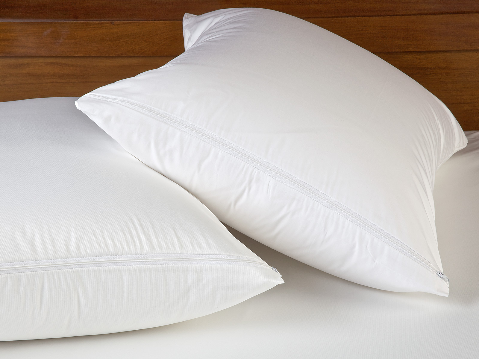 Bed Bugs In Feather Pillows