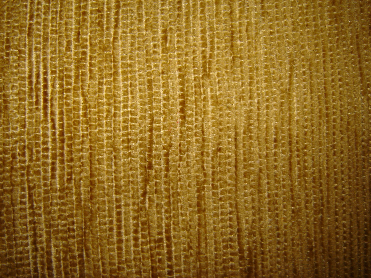 Chenille Fabric By Dugouha (Own work) [CC BY-SA 3.0 Retrieved from Wikimedia Commons