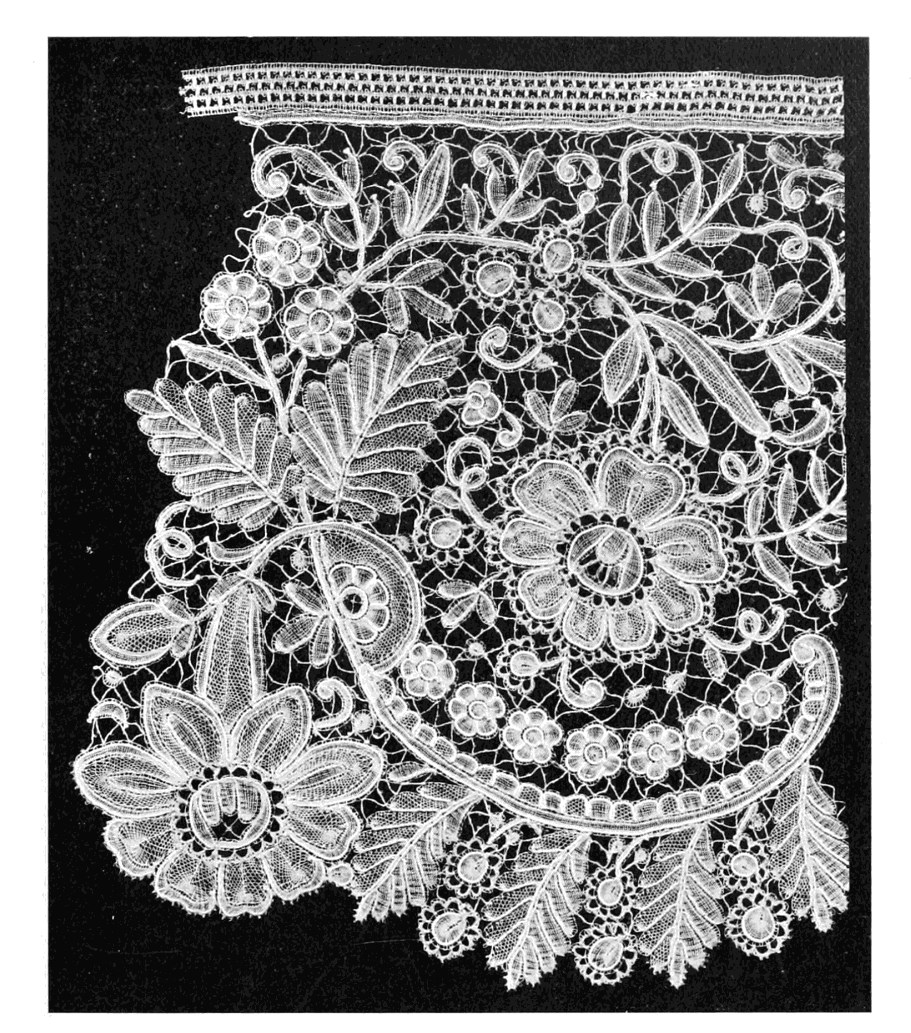 Duchesse Lace Detail, 19th century By Samuel L. Goldenberg (Lace: Its Origin and History.) Retrieved from Wikimedia Commons